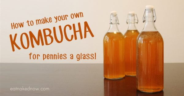 How to make your own Kombucha for pennies a glass | eatnakednow.com